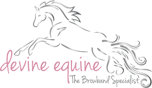 Devine Equine Browbands
